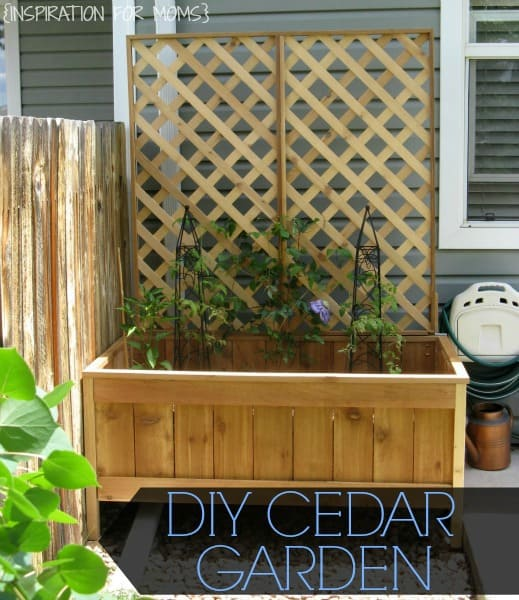 How To Build A Raised Cedar Garden