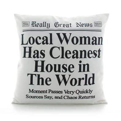 house cleaning pillow