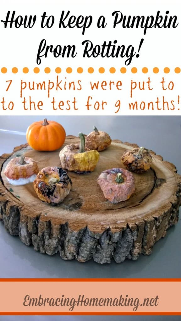 keep-a-pumpkin-from-rotting