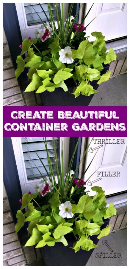 Create your own container garden with this easy tutorial. Beautiful gardens are in your future!
