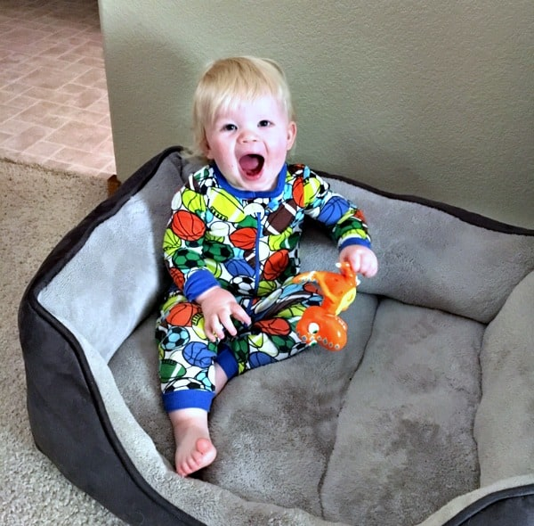 Toddling Right Along + Giveaway