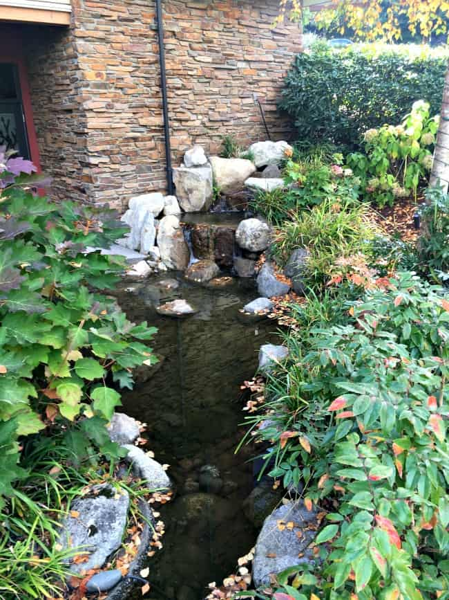 cederbrook-lodge-and-spa-is-such-a-relaxing-place-near-the-seattle-airport-little-waterfall