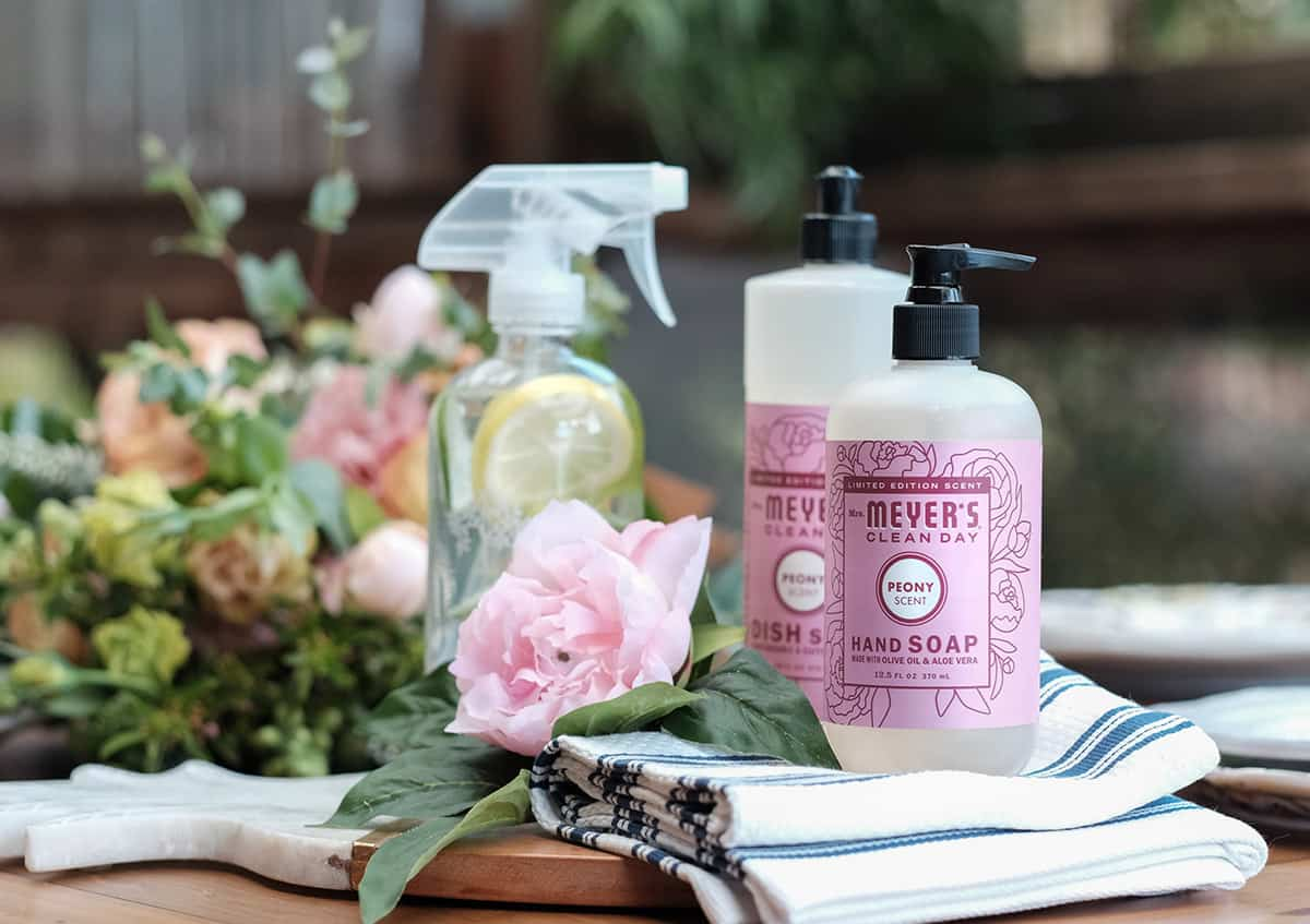free seasonal kit - all you need to spring clean your home fast