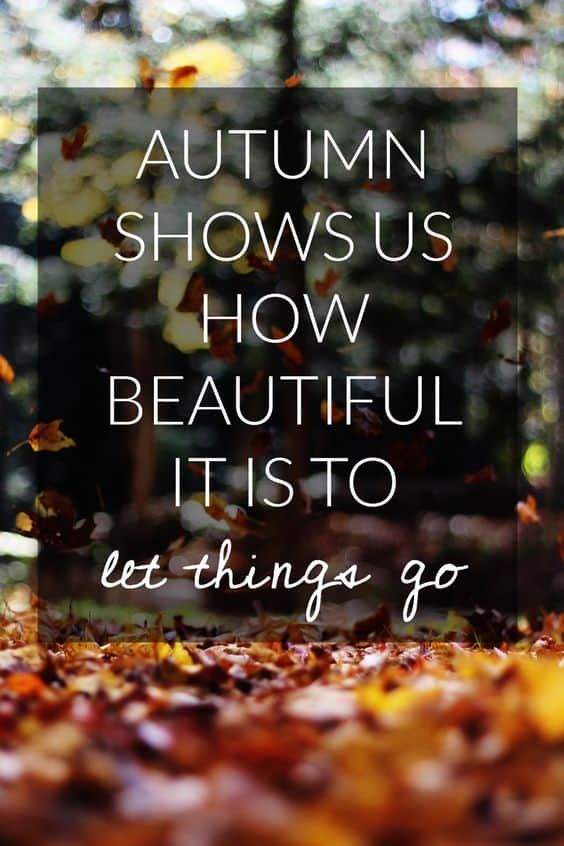 Autumn shows us how beautiful it is to let things go!