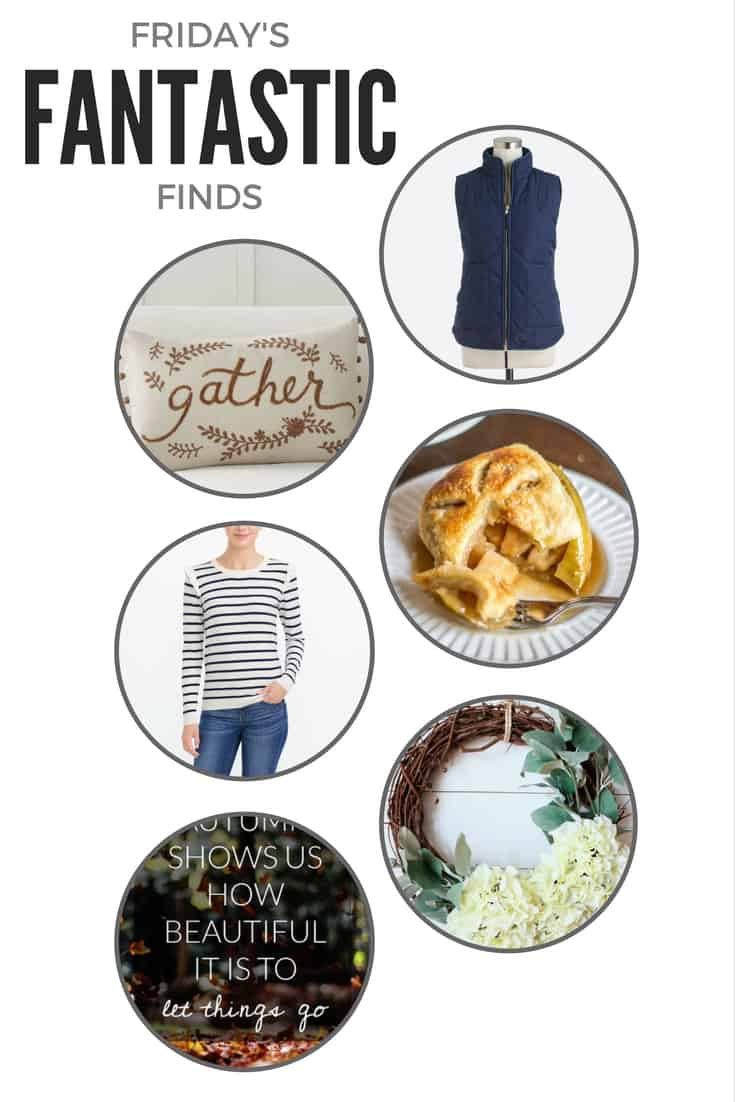 It's Friday! Welcome to another Friday's Fantastic Finds -- here's a little roundup of what caught my eye this week!