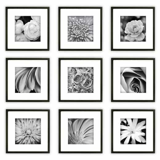 Set of gallery frames for the home! Love the 12x12 size.
