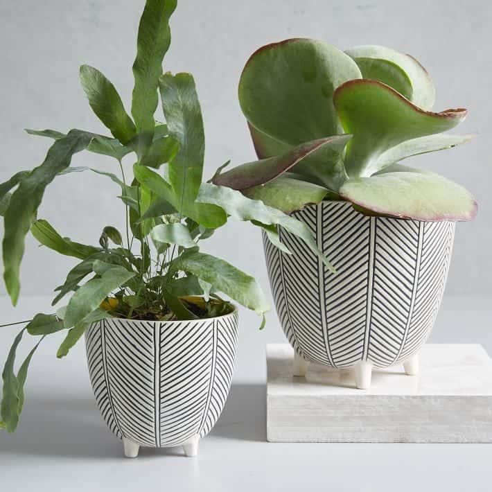 herringbone planters