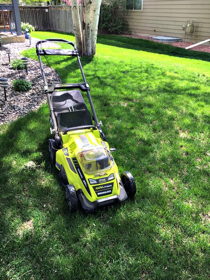 If you struggle with prepping your yard for spring, I have helpful tips. Learn where to start, what to do and which tools will help you get the job done right!