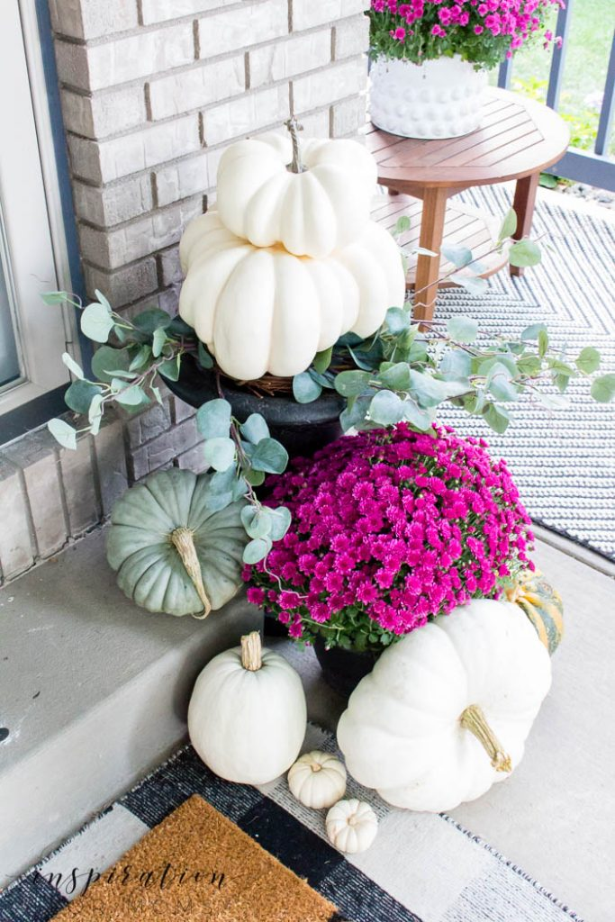 fall decorating with pumpkins and plum mums