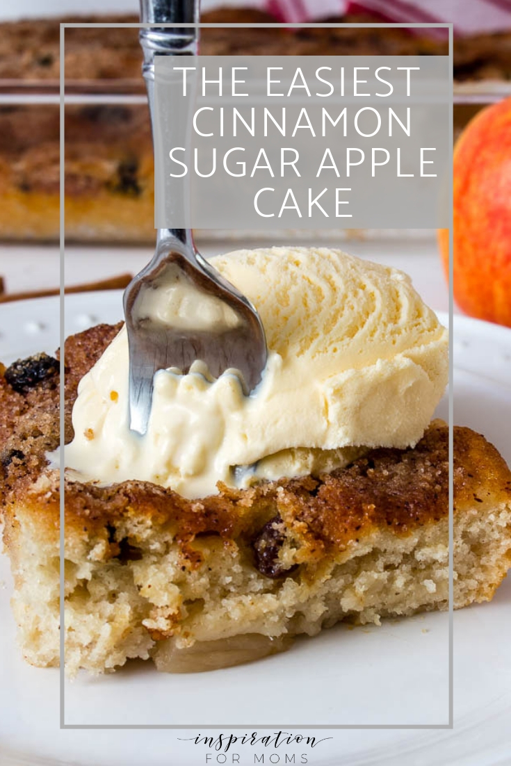 Taste the goodness of the fall season with this delicious cinnamon sugar apple cake. I'm telling you, fall never tasted so good!