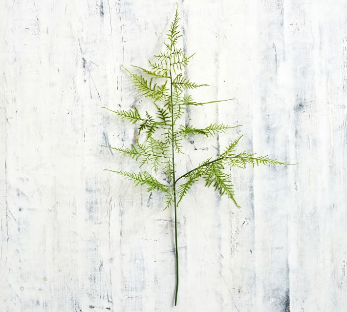 Faux asparagus stem - great for easy home decor!