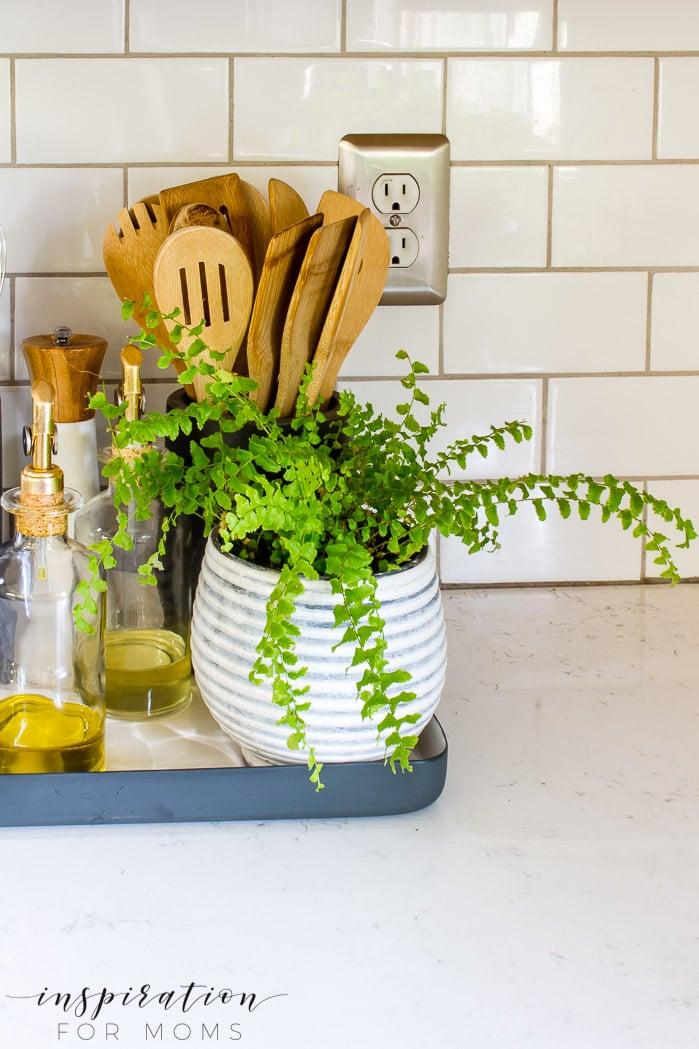 Kitchen Counter Organization item gray striped planter with green fern