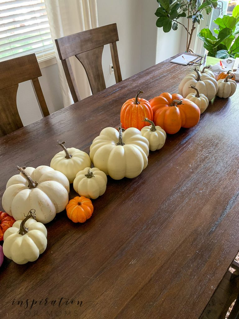 gathering of mixed pumpkins for ombre painted pumpkins