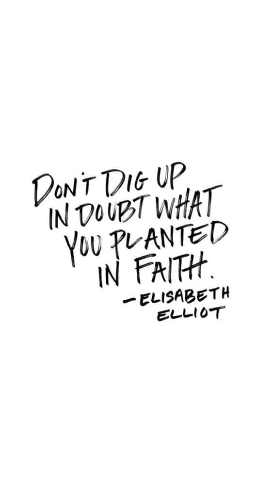 Don't Dig Up Doubt