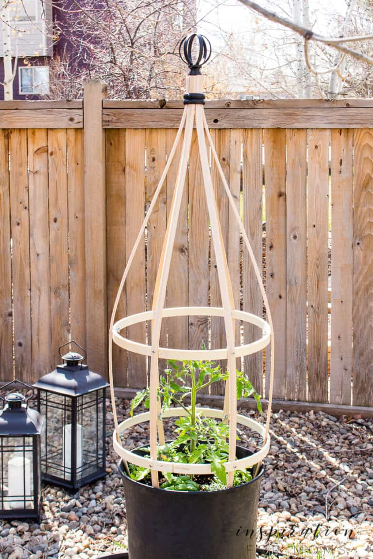 DIY Planter Trellis – Perfect For Container Gardens