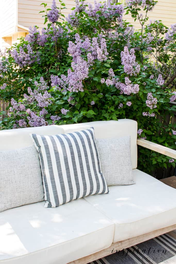 Outdoor deck lounge area with bench outdoor pillows and lilac in bloom