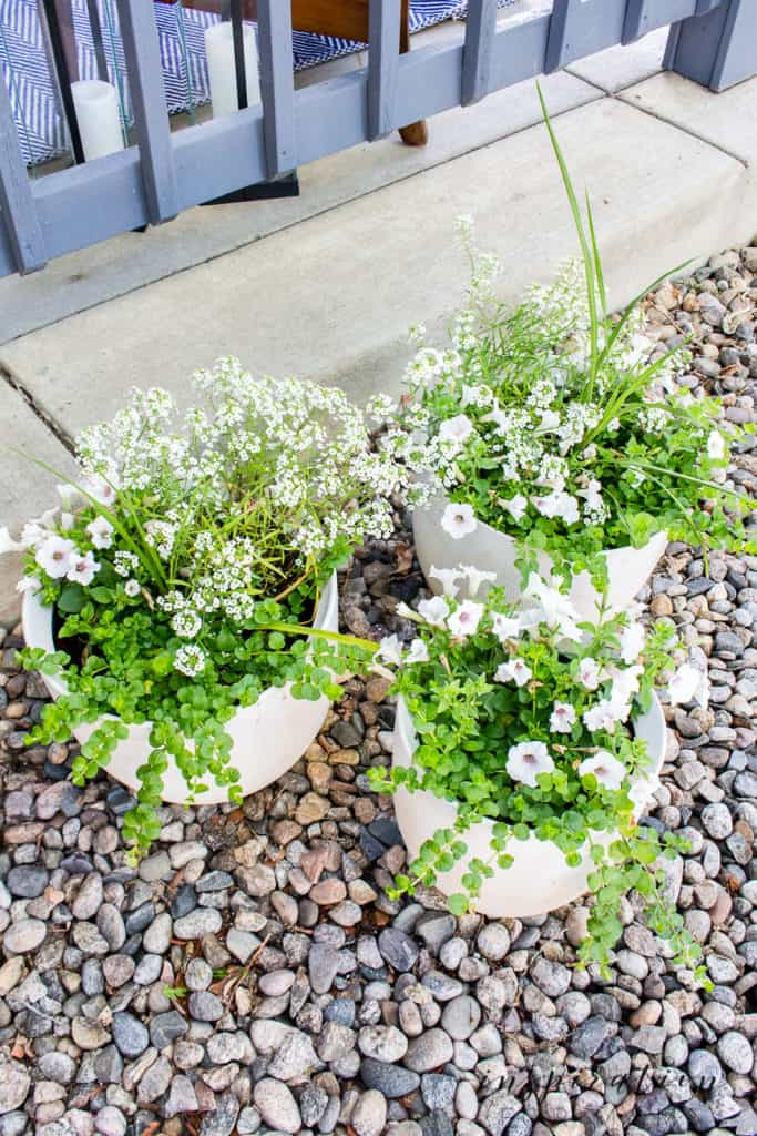 set of three white ceramic textured planters filled with flowers